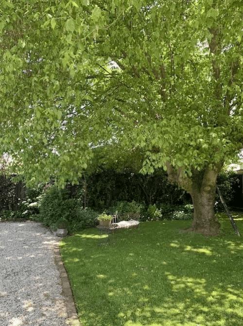 Luxury picnic private garden setting